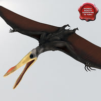 pterosaur static 3d model
