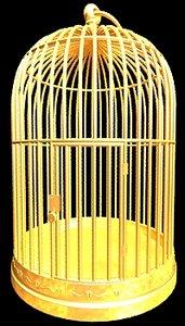 golden cage 3d model