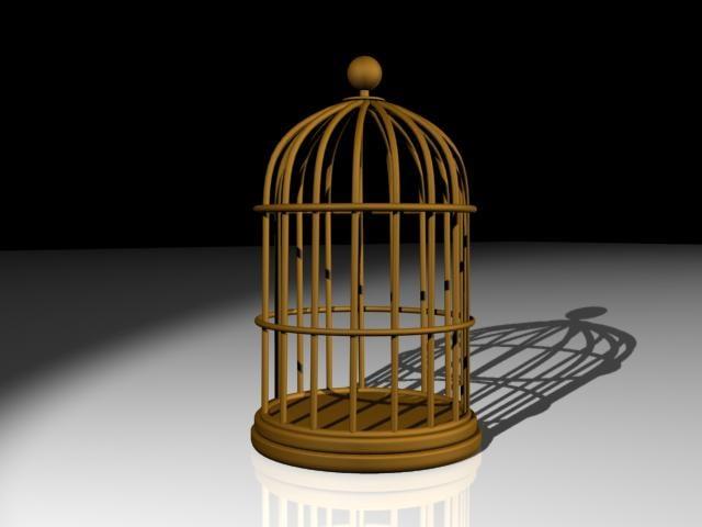 bird cage max