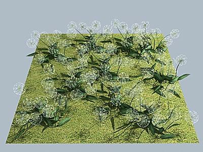 flower dandelion 3d model