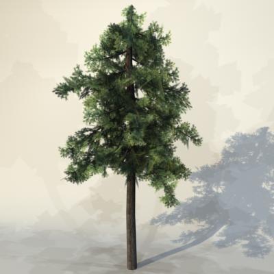 pc tree max