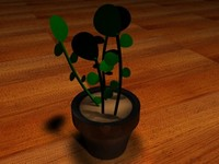 3d model office house plant