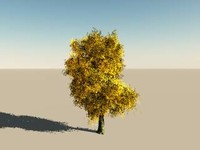 tree 3d vue