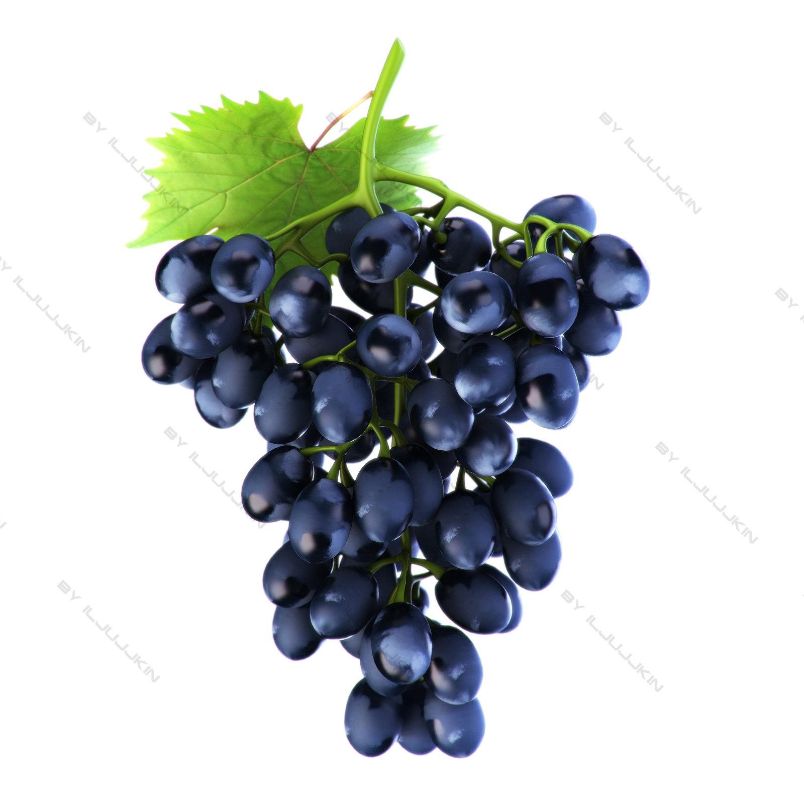 realistic grapes black 3d model