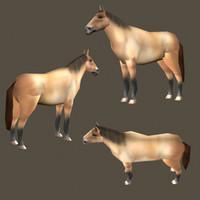 3d horse games