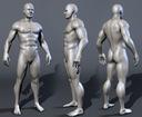 realistic male body 3d max
