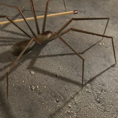 spider arachnid 3d max