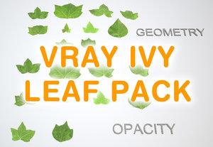 3d ivy leaf model