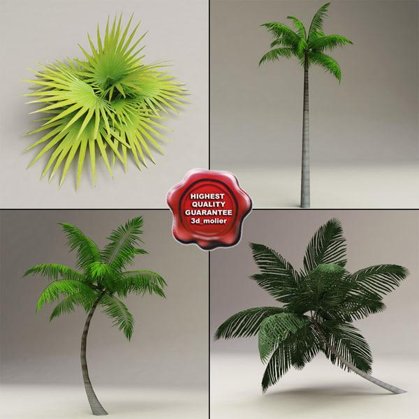 3d palms set modelled model