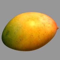 mango fruit 3d model