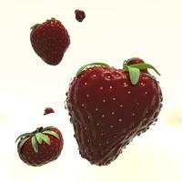 strawberry ma