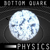 Bottom Quark