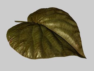 3d leaf model