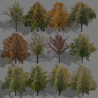 game trees autumn 01