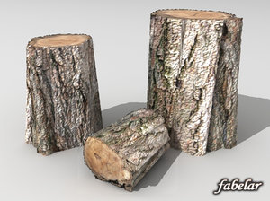 3d model trunks standard
