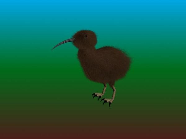 free max mode kiwi bird