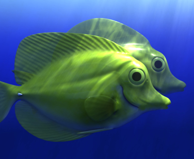 yellow tang 3d model