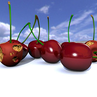 cerezas cherries 3d model