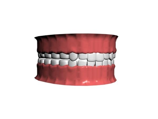 3d model human modeled teeth