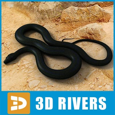 black smooth python snakes 3d model