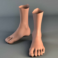 3d human foot model