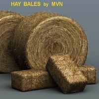 bales hay 3d model