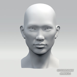 asian female head 3d model