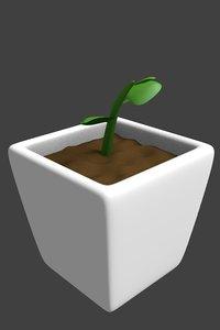 maya plant pot sapling