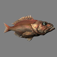 Red Fish - low poly