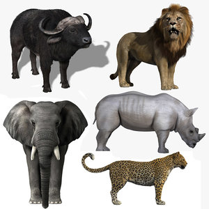 africa big lion elephant 3d model
