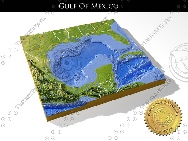 3d relief gulf mexico topography