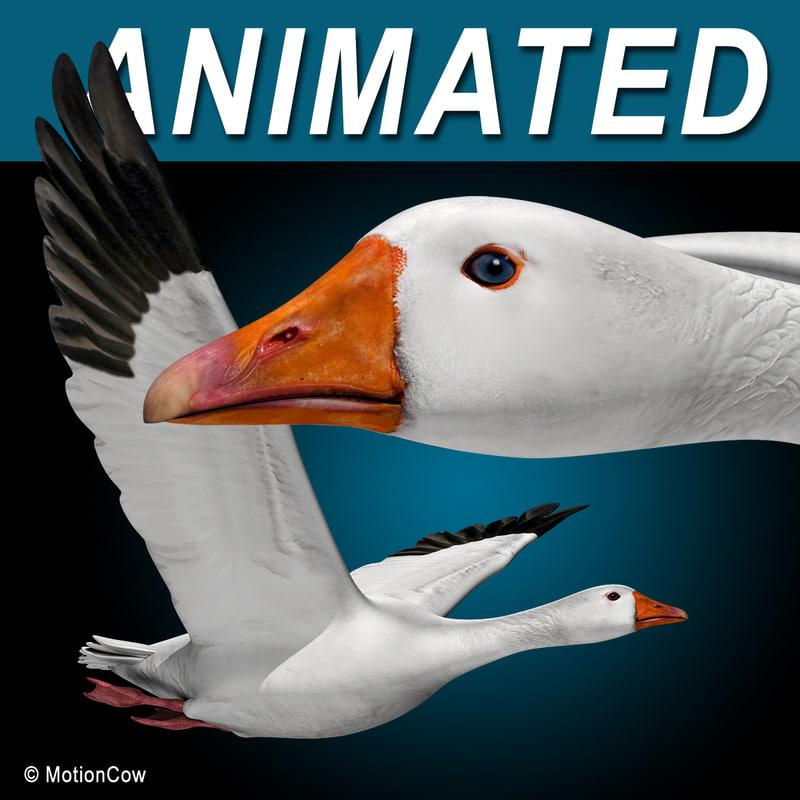 flying goose 3d model