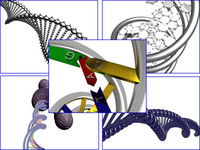 set 5 dna included 3d model