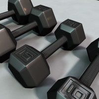 set dumbbells 3d model