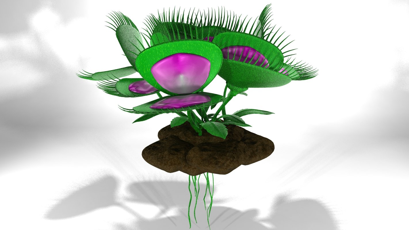 3ds max venus fly trap