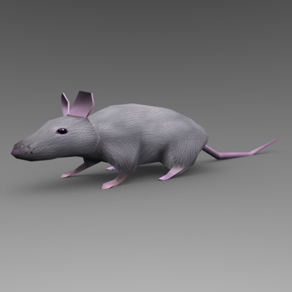 3d cute rat animations