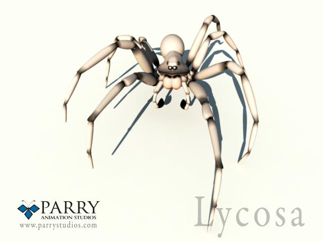 maya lycosa spider