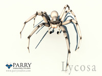 spider (polygons)