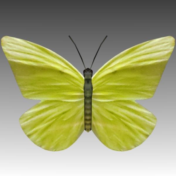 low-poly butterfly wings fly 3d model