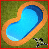 Swimming Pool Wood