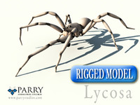 rigged spider ma