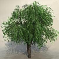 Tree_023.zip