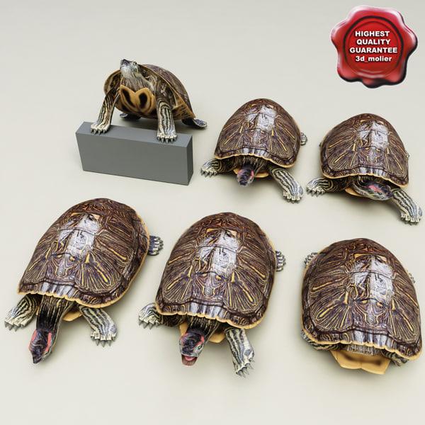 turtle red-eared slider poses 3d lwo