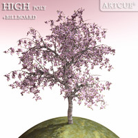 3ds max blooming cherrytree high-poly