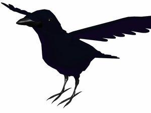 low-poly crow 3d model