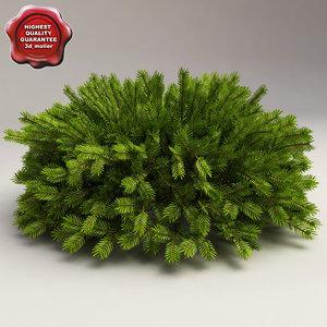 3d model norway spruce