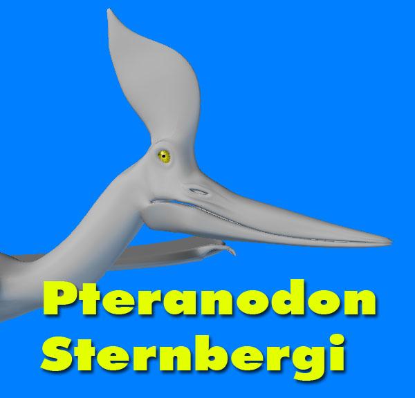3ds pteranodon sternbergi