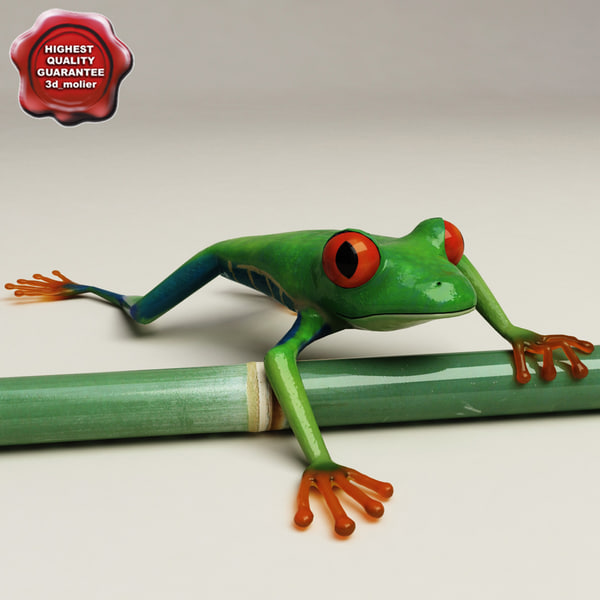 max red eyed tree frog