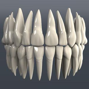 dental 3d model