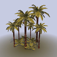 Palm_tree_bush